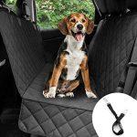 Mejores Accesorios para perros para el coche